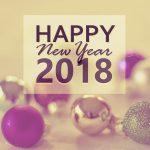 【2018年】新年の遅すぎるご挨拶と今年の目標・ブログもっと書きたい